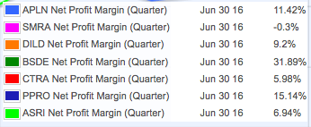 Net Profit Margin Property